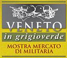 Veneto in Grigioverde